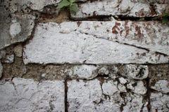 Schließen Sie oben von der alten Backsteinmauer an einem ehemaligen Gefängnis in Asien nachlässig p Lizenzfreie Stockfotografie