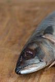 Schließen Sie oben von der atlantischen Makrele auf hackendem Brett lizenzfreie stockbilder