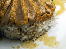 Schließen Sie oben von der Braten-Ente mit Reis Lizenzfreie Stockfotos
