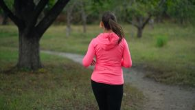 Schließen Sie oben von der Frau, die durch einen Herbstpark bei Sonnenuntergang, hintere Ansicht läuft Langsame Bewegung stock video footage