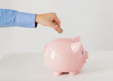 Schließen Sie oben von der Hand, die Münze in Sparschwein setzt Lizenzfreies Stockbild