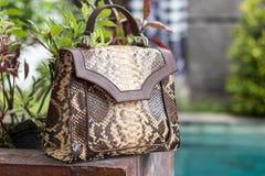 Schließen Sie oben von der Luxustasche stilvoller weiblicher snakseskin Pythonschlange draußen Teure weibliche Tasche der moderne stockfotografie