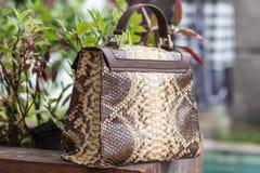 Schließen Sie oben von der Luxustasche stilvoller weiblicher snakseskin Pythonschlange draußen Teure weibliche Tasche der moderne lizenzfreie stockbilder