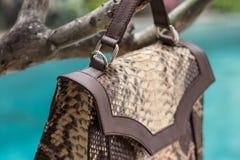 Schließen Sie oben von der Luxustasche stilvoller weiblicher snakseskin Pythonschlange draußen Teure weibliche Tasche der moderne stockfotos