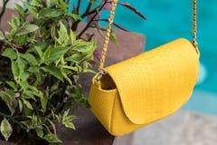 Schließen Sie oben von der Luxustasche stilvoller weiblicher snakseskin Pythonschlange draußen Teure weibliche Tasche der moderne lizenzfreie stockfotografie