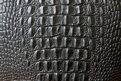 Schließen Sie oben von der schwarzen Schlangen- oder Krokodilhautbeschaffenheit große Umfänge stockfotos
