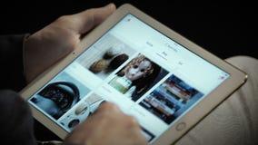 Schließen Sie oben von Ebays Website auf einem ipad Schirm stock video