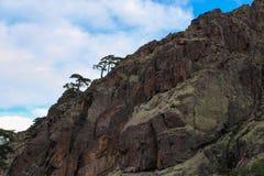 Schließen Sie oben von einem Berg Lizenzfreie Stockfotos