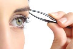 Schließen Sie oben von einem Frauenauge und handrupfende Augenbrauen Lizenzfreies Stockfoto