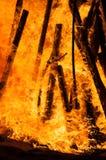 Schließen Sie oben von einem Scheiterhaufen, der auf dem Strand brennt Lizenzfreies Stockfoto