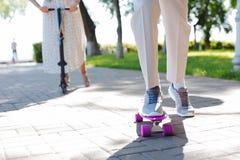 Schließen Sie oben von einem violetten Rochen stockfoto