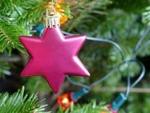 Schließen Sie oben von einer roten Sterndekoration auf einem Weihnachtsbaum stockfoto