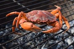 Schließen Sie oben von einer ungekochten Krabbe auf dem Grill Stockfoto