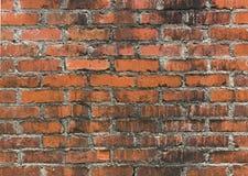 Schließen Sie oben von einer Weinlese-Backsteinmauer Stockfoto