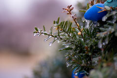 Schließen Sie oben von Eis bedeckten Weihnachtsglühlampen im Freien lizenzfreies stockbild