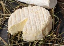 Schließen Sie oben von französischem Käse Heiligem Marcellin auf Stroh stockfoto