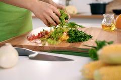 Schließen Sie oben von Frau ` s Händen, die in der Küche kochen Hausfrau, die frischen Salat schneidet lizenzfreie abbildung