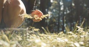 Schließen Sie oben von Frau ` s Handrührender Anlage auf grünem Naturhintergrund stock video