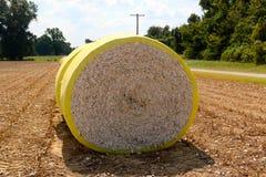 Schließen Sie oben von geernteter Baumwolle in einem Ballen Stockfotografie