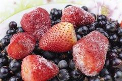 Schließen Sie oben von gefrorener Mischfrucht - Beeren - Schwarze Johannisbeere, Erdbeere stockbilder