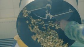 Schließen Sie oben von rührendem Popcorn in der Schüssel auf der Fabrik 4K stock video