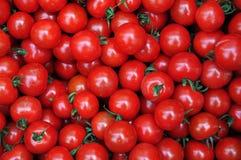 Schließen Sie oben von vielen frischen roten Tomaten Lizenzfreies Stockbild