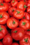 Schließen Sie oben von vielen frischen roten Tomaten Stockfotografie