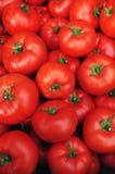 Schließen Sie oben von vielen frischen roten Tomaten Lizenzfreies Stockfoto