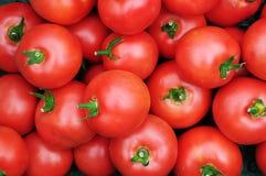 Schließen Sie oben von vielen frischen roten Tomaten Stockbild