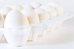 Schließen Sie oben von zehn weißen Eiern Lizenzfreie Stockfotografie
