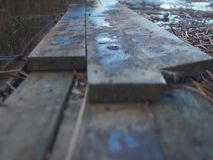Schließen Sie oben vom hölzernen Dock im Sumpf stock video footage