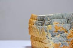 Schließen Sie oben vom schimmeligen Brot auf weißem Hintergrund, lief kann nicht mehr essen ab, weil es zur Gesundheit schädlich  lizenzfreies stockfoto