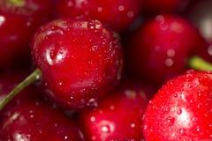 Schlie?en Sie oben von frischem Cherry Berries mit Wasser-Tropfen Antioxydant, Vitamin, organische Beere lizenzfreie stockbilder