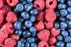 Schließen Sie herauf frische organische Blaubeeren und Himbeeren Reiche mit Vitaminen Hintergrund, Beschaffenheit Lizenzfreie Stockbilder