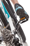 Schließen Sie herauf radelnde Mountainbike des Radfahrers der hinteren Ansicht Stockbild
