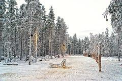 Schlitten am Schneetal in finnischem Lappland im Winter Stockbild