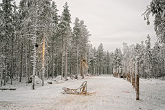 Schlitten am Schneetal in finnischem Lappland im Winter Lizenzfreie Stockbilder