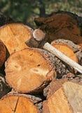 Schlittenhammer auf hölzernem Stapel Lizenzfreies Stockbild