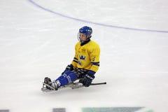 Schlittenhockey Stockbilder