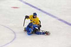 Schlittenhockey Stockfotos