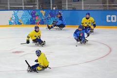 Schlittenhockey Lizenzfreie Stockfotografie