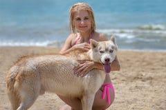 Schlittenhund und Blondine Stockfoto