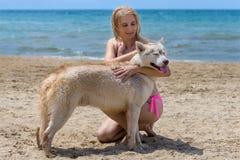 Schlittenhund und Blondine Lizenzfreie Stockfotografie