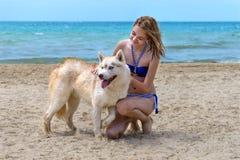 Schlittenhund und Mädchen Stockfotos