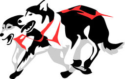 Schlittenhunde Stockbild