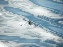 Schlittschuhläufer auf dem Teich im Dorf Stockbild
