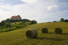 Schloss auf dem Hügel am Sommer lizenzfreie stockfotografie