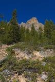 Schloss-Berg Stockbild