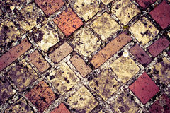 Schloss-Boden Stockbild