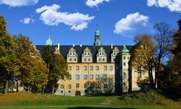 Schloss der Herzöge Olesnicki Stockbild